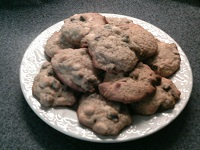 Fast Easy Chocolate Chip Cookies